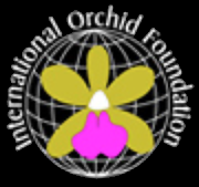 Orchids.org